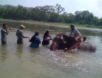 Chitwan National Park -